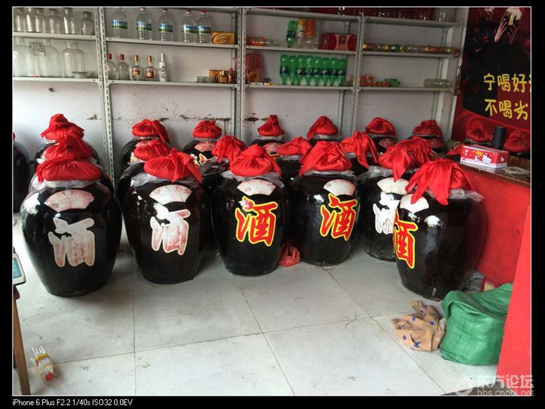 【丐帮】嵊州挖笋采茶大灶米饭